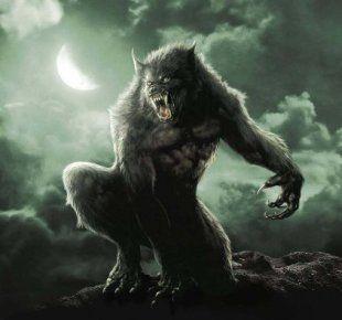 Dit is een weerwolf,een mens dat in een wolf kan veranderen. Vb:Sirius zwarts en Professor Lupos.