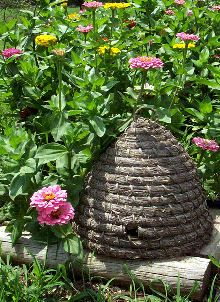 Bee skep in zinnias, great for the herb garden.