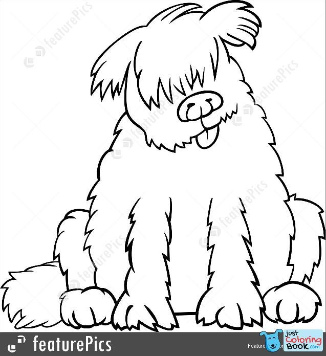 Pets Newfoundland Dog Cartoon For Coloring Book Stock Inside