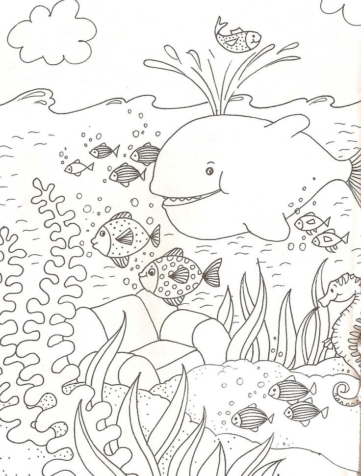 onderwaterwereld kleurplaat - Google zoeken