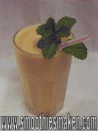 Lekker recept voor meloen smoothie en tevens een nog lekkerder meloen dessert.