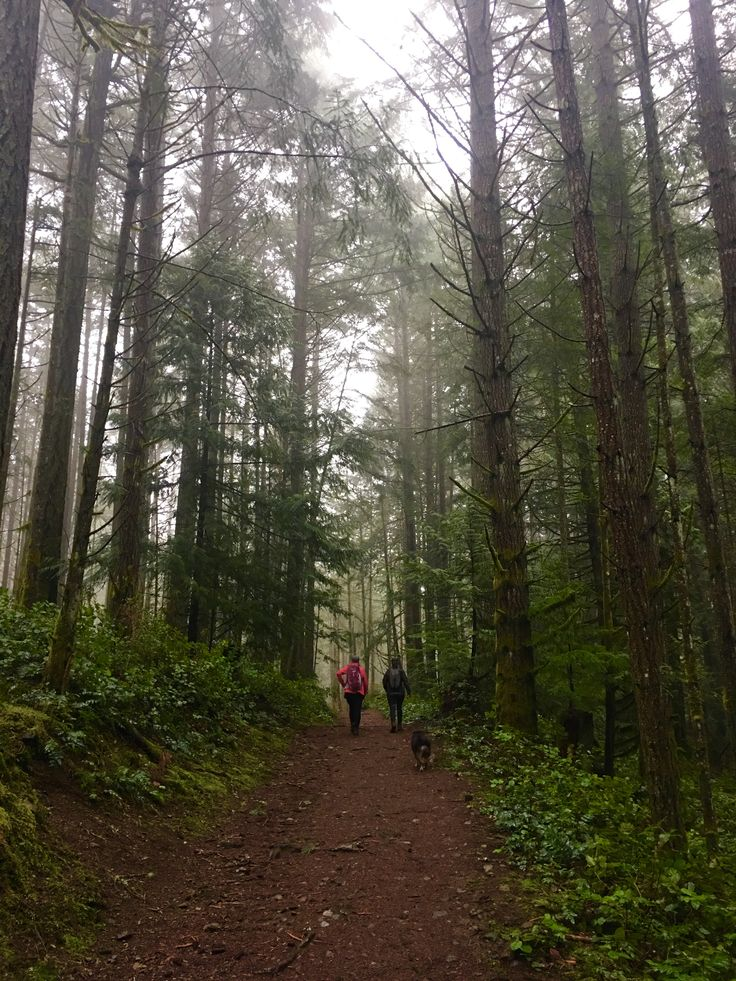 Vancouver Island trails