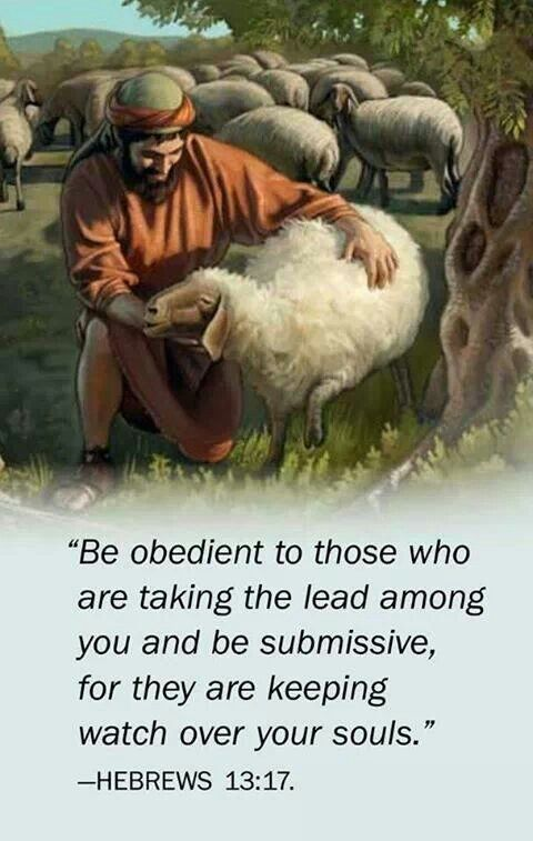 """Hebrews 13:17 - People today don't like the word """"obedient"""". They like to do their own thing. But obedience to GOD saved Noah and his family, Lot and his daughters, Moses and the Israelites, Daniel, the 3 Hebrews, and obedience to a parent recently saved a family in a Mall massacre. Be obedient to those who are caring for your soul."""