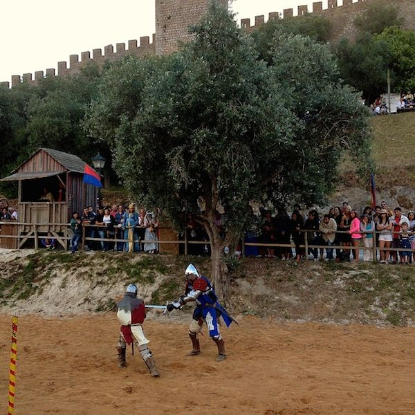 The Knight's Tournament at the Medieval fair