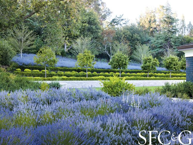Best 20 Formal gardens ideas on Pinterest Formal garden design