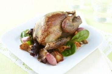 Découvrez cette recette de Pigeon rôti à l'ail, fricassée de champignons expliquée par nos chefs