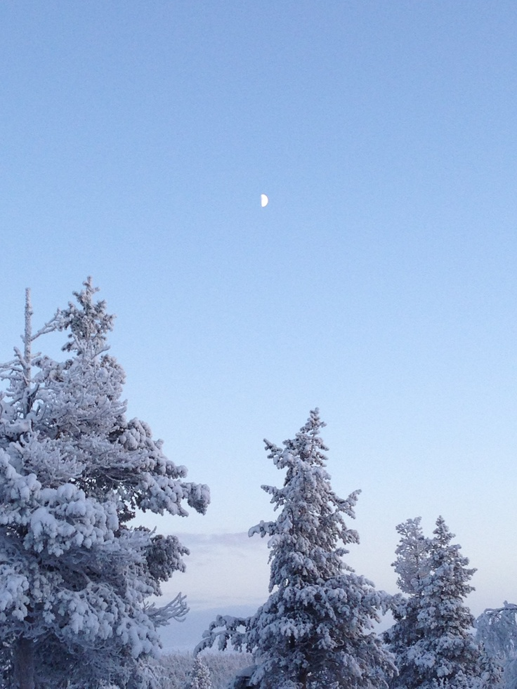 Winter moon in Saariselkä, Finland