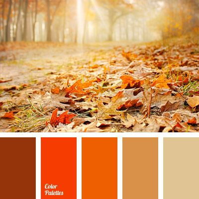 A monochrome color palette. The predominant color is orange. Due to the use of the different shades the combination turns out very beautiful and reminds of the autumn season. This combination of colors can be used to decorate a playroom or a living room. The room, however, should be well-lit.