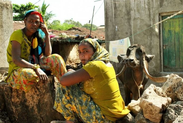 An African tribe in India: the Siddi's