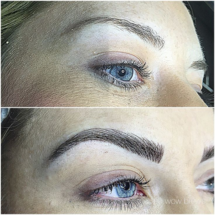 Microblading 3d Hair Strokes: 111 Best CMH / TAYLA MADE WOW BROWS Feather Touch