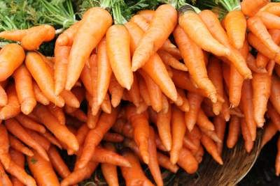 Carrot benefits for the eyes due to the presence of the abundant amounts of beta-carotene, which is converted into vitamin A in the liver.