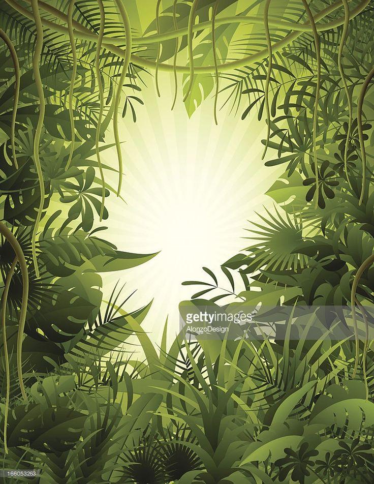 Vector Art : Tropical Rainforest
