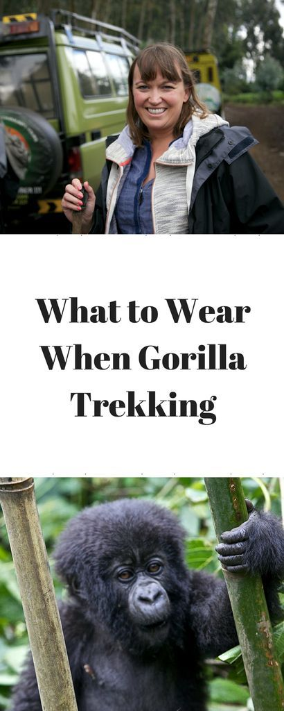 What to Wear When Gorilla Trekking www.minitravellers.co.uk Use a small backpack as it is useful to carry your water, packed lunch, camera and binoculars. I'll used the Dublin Backpack from Helly Hansen big enough, but light with useful pockets. Hiking boots/strong waterproof walking boots.  The ground is uneven so shoes with good ankle support. Light jumper and light rain poncho as the temperature is variable and weather conditions can change Long wool socks designed for a mountain tropical…