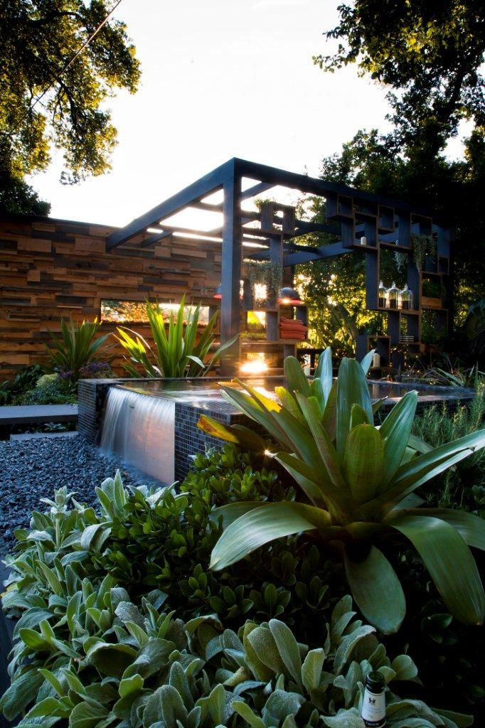 55 best images about bromeliad landscaping on pinterest for Pool show in melbourne