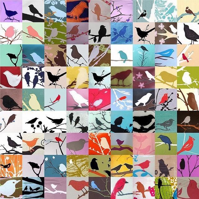 Bird on branch research, 2007 via Sean Tubridy - http://www.flickr.com/photos/seantubridy/2080178890/ #birds #putabirdonit #etsy
