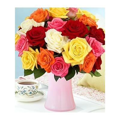 proflowers special codes free shipping