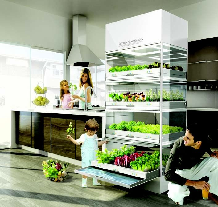 Nano Garden co es in small, home versions, larger commercial versions (that work at home) and living green aisle, a retailer of the machinery and smoothies, fresh greens, etc. machines $2-$6,000