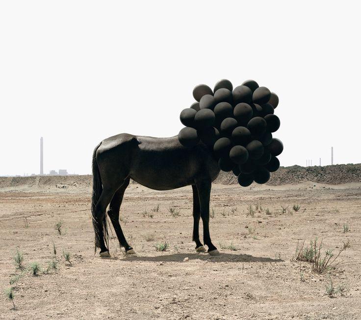 creepy cool.Photos, Inspiration, Art Photography, Image, Andreagalvani, Black Balloons, Black Horses, Andrea Galvani, Design