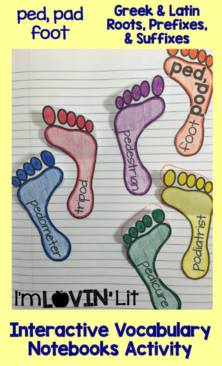 Ped, Pad - Foot; Greek and Latin Roots, Prefixes and Suffixes Foldables; Greek and Latin Roots Interactive Notebook Activity by Lovin' Lit