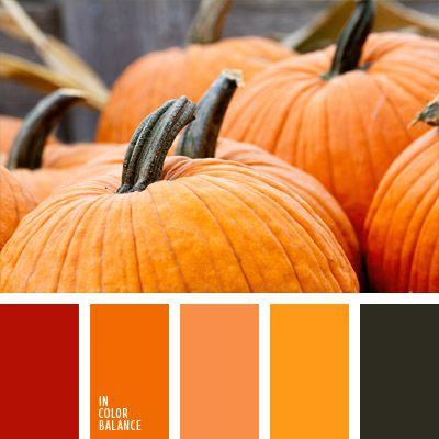 amarillo, anaranjado, color calabaza, color otoño, colores para la decoración, elección del color, paletas de colores para decoración, paletas para un diseñador, rojizo, rojo pardusco.