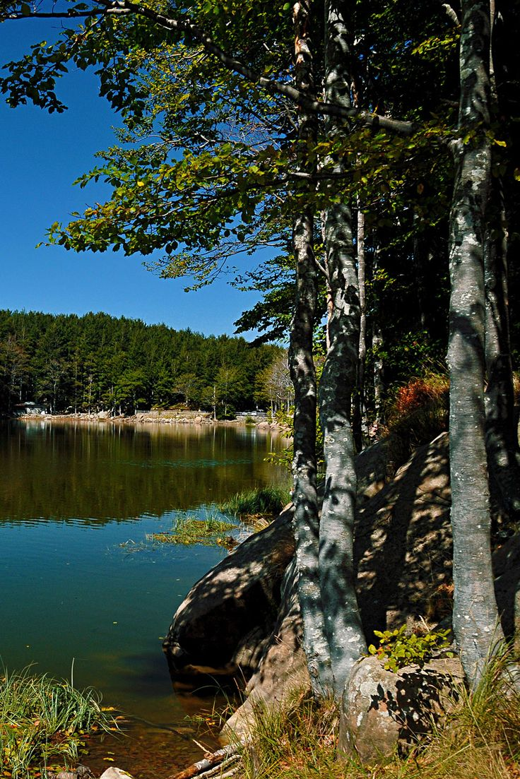 High Val Parma Forest  -  The Lagoni  Lower Lake