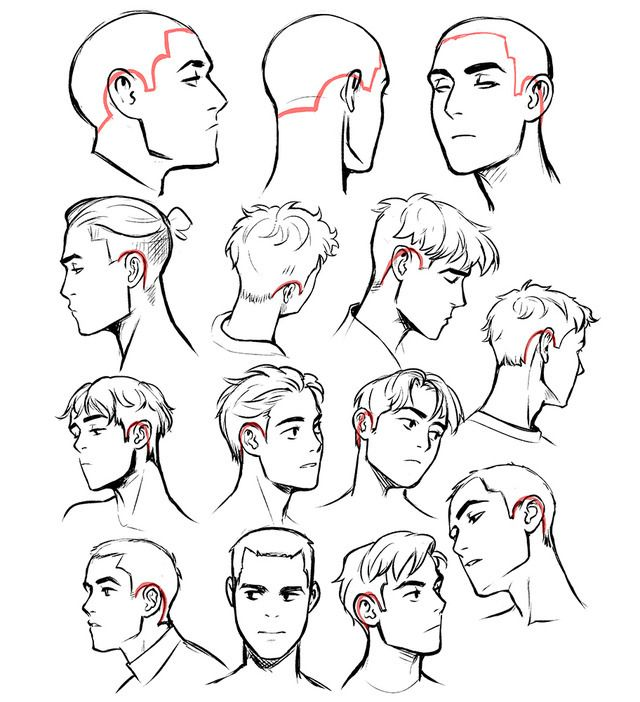 Hair Hairline Art Reference Poses Sketches Art Reference Photos