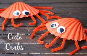 Des crabes 9974291-16182139