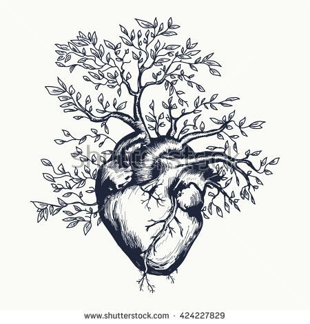 Anatomical human heart from which the tree grows heart tattoo art heart vector illustration