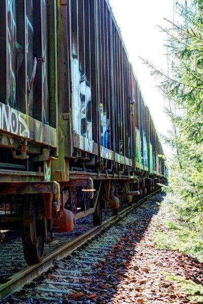#track #train #spring #sweden 2015