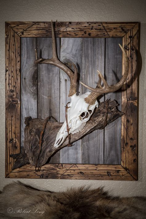 My second european deer mount that I made to match my other one. Like the first one, I made the frame from new wood that I distress and stained. The back is made from old fence boards and I found a nice piece of drift wood and some old barbed wired to complete the look.