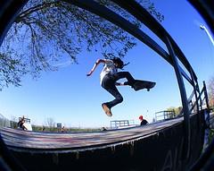 Wolfville Skateboard Park