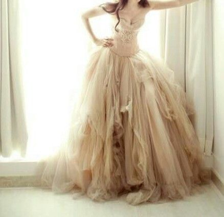 Rustic Vintage Wedding Dresses Champagne Color