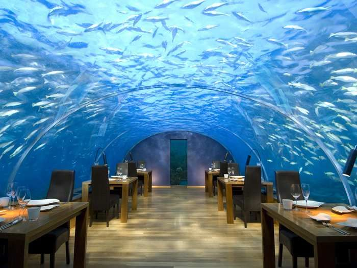 #Conrad Maldives #Rangali Island Hotel - Underwater Restaurant - give seafood (or should I say seefood) dining a whole new meeting.
