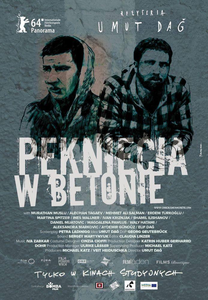 Cracks In Concrete / Risse Im Beton (Polish #poster)