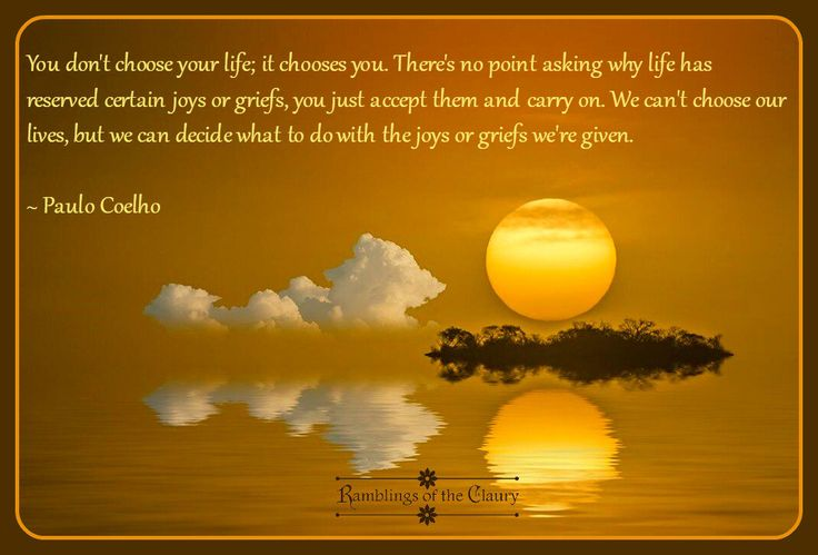You don't choose your life; it chooses you. There's no point asking why life has reserved certain joys or grief, you just accept them and carry on. We can't choose our lives, but we can decide what to do with the joys or griefs we're given.