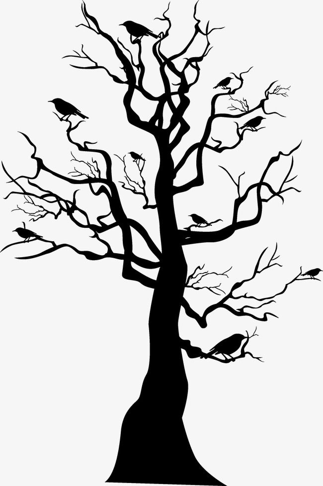 Silhouette Transparent Background Tree Png: Silhouette Transparent  Background Tree Png: Silhouette Transparent Background Tree Png: Transparent  Background Vector Tree Silhouette: Transparent Transparent Background Tree  Silhouette: Transparent