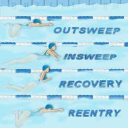639 best images about Swimming on Pinterest | Swim, Swimming tips ...