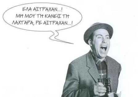 """αουτσάιντερ : """"μουλάρι ο Αστραχάν"""""""