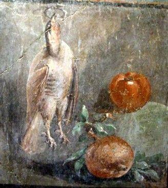 Roman fresco depicting birds and fruits, Pompeii.