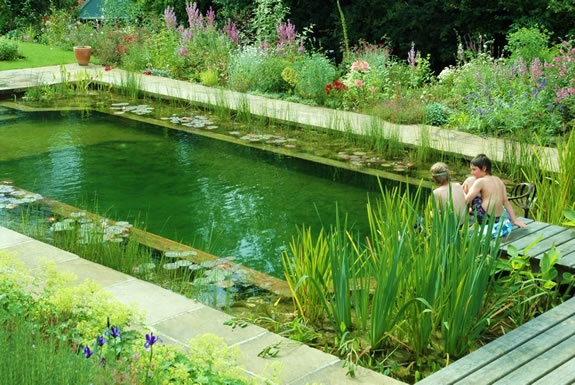 NATURAL SWIMMING POOLS: are possibly the most rewarding feature you could put in your garden and the most suitable kind of swimming pool for any situation outdoors in our climate.They always look beautiful, naturally warm up fast and efficiently in the sun, the water is clean, crystal clear, pure and soft on the skin and hair and has no harmful chlorine or chemicals, environmentally friendly.