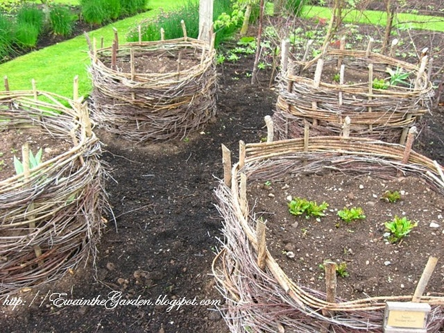 Great Blog Site With Pics Of An English Veg Garden. Love The Stakes, Twig