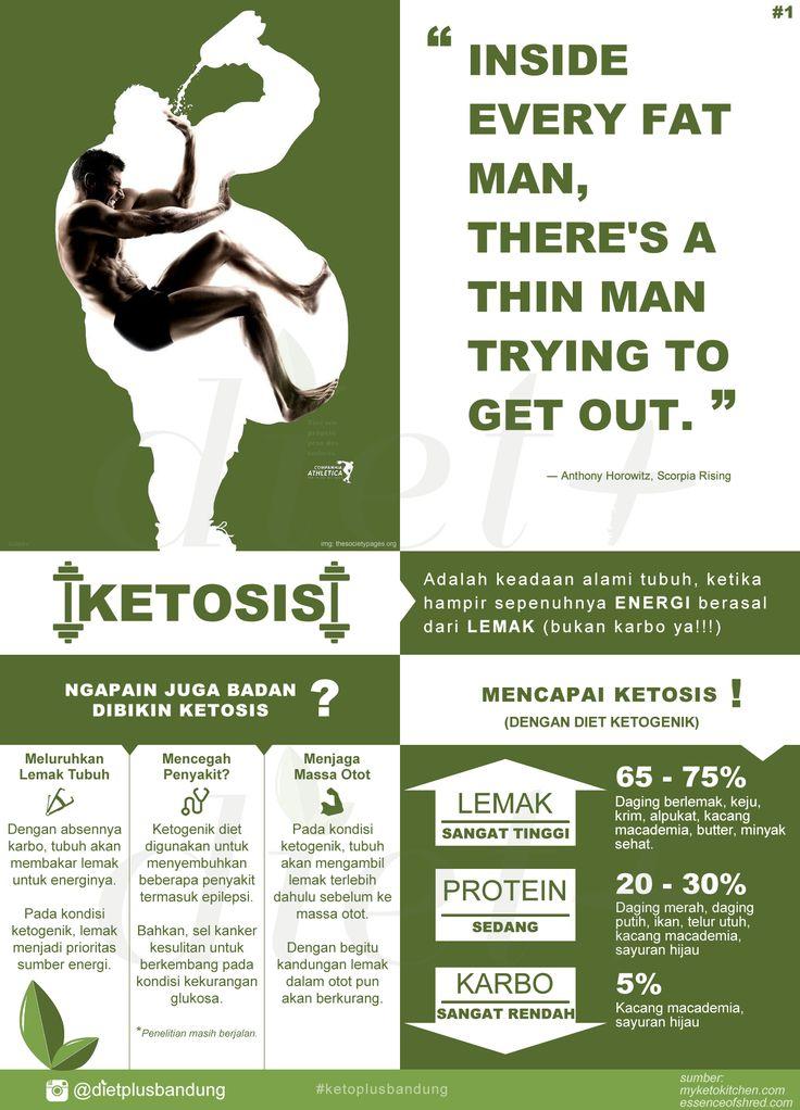 Diet Ketogenik, memiliki komposisi asupan lemak paling tinggi, diikuti serat dan protein pada level sedang, serta menekan asupan karbohidrat atau gula menjadi sangat rendah. Hal ini bertujuan supaya tubuh yang tadinya menggunakan glukosa sebagai bahan energi, berpindah ke lemak sebagai energi, kondisi ini alami dan disebut ketosis, pada mode ini tubuh akan membakar semua lemak yang ada sebagai bahan energinya.
