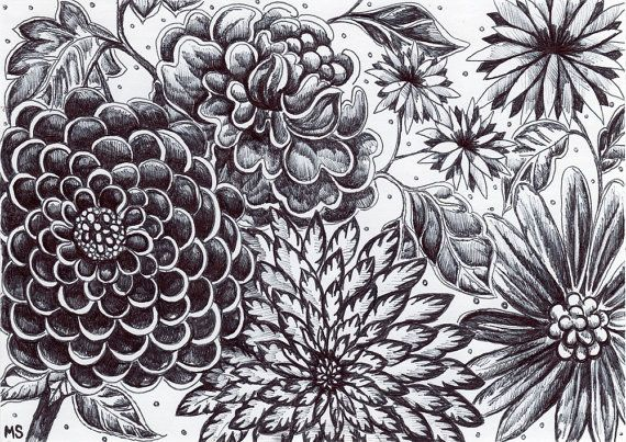 Black and White Flowers - Original Ink Drawing - Moonlight Garden ...