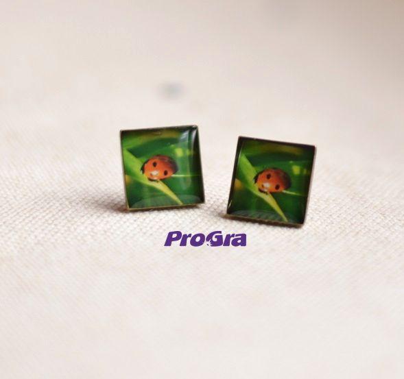 Lienky - náušnice Ladybirds - earrings