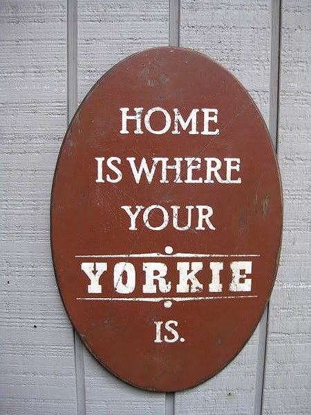 PRIMITIVE SIGN  Home Is Where Your Yorkie Is or by 20milestand