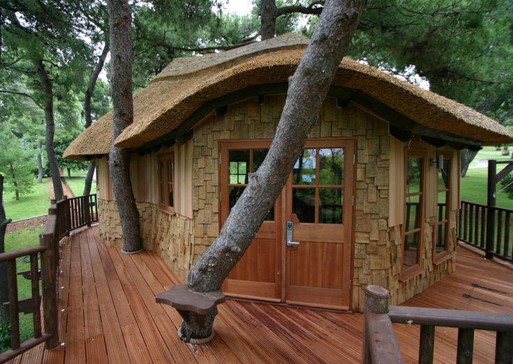 Tree home style & design 4