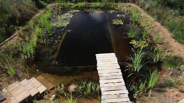 41 best images about ways to help others have homes more for Garden pool doomsday preppers