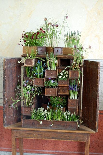 Chest of drawers as a large, layered planter. Lush!