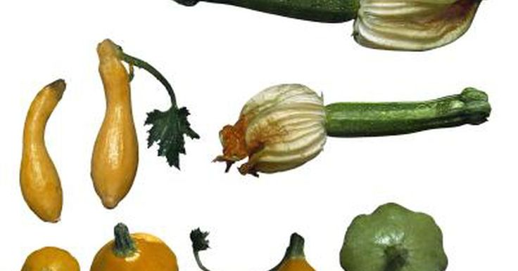 If you're looking for a low-calorie, low-fat way to add a boost of essential nutrients to your diet, look no further than squash. The vegetable comes in a variety of types, such as pumpkins, acorn squash, zucchini and summer squash, and has a mild enough taste that it can pair well with a variety of meats, pastas and other main dishes.