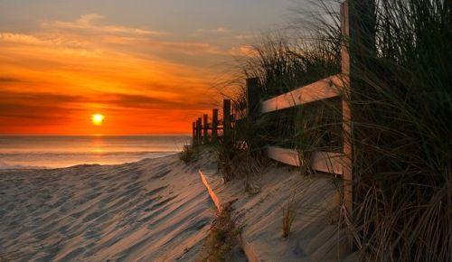 sunsurfer:    Sunrise, Sandbridge Beach, Virginia   photo by dougroane via lickypickysticky